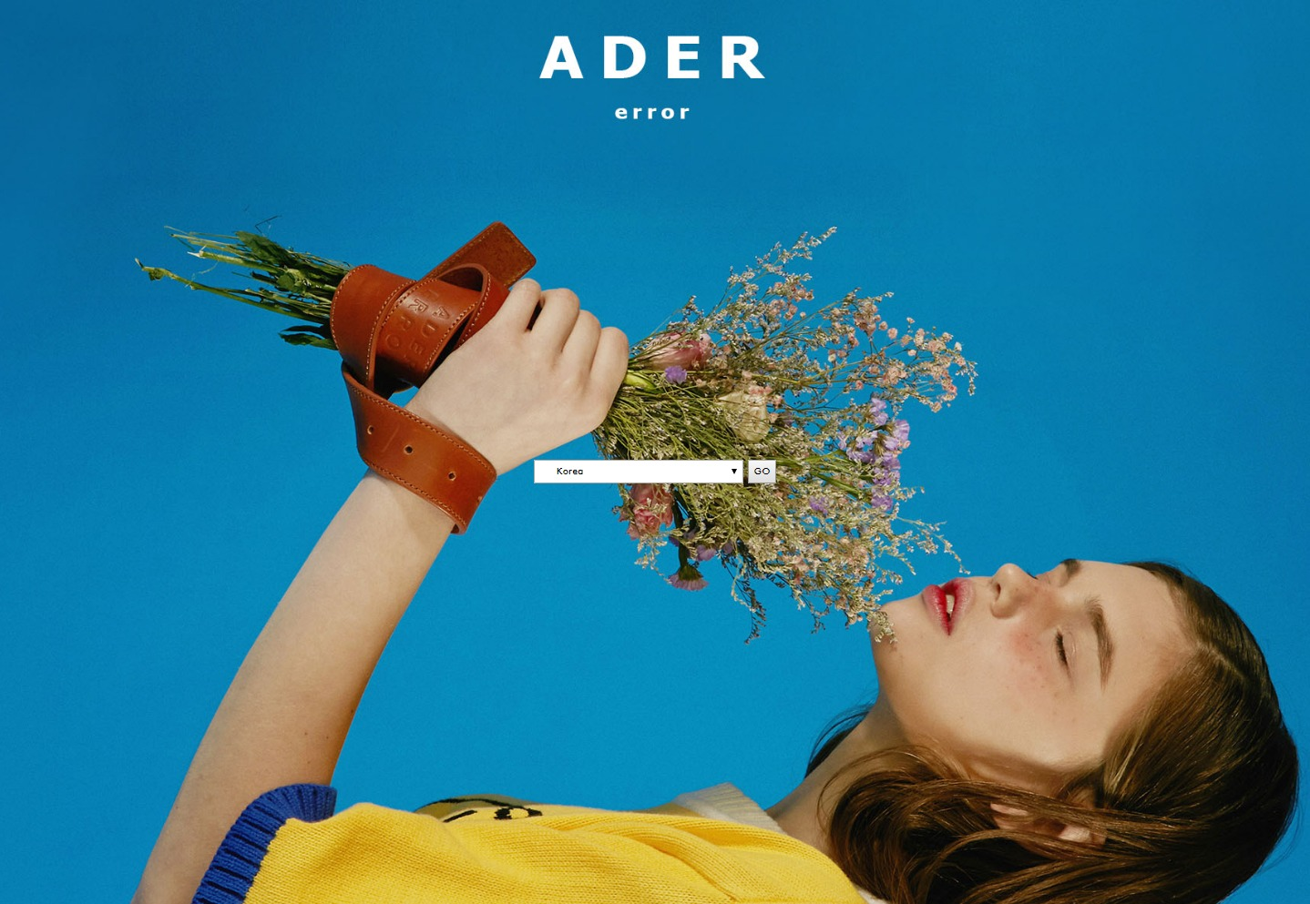 welcome   Ader error